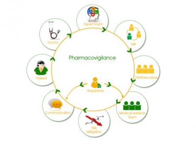 Everything You Wanted to Know About Pharmacovigilance